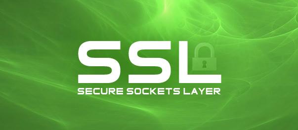 SSL сертификат — виды, особенности и методы проверки